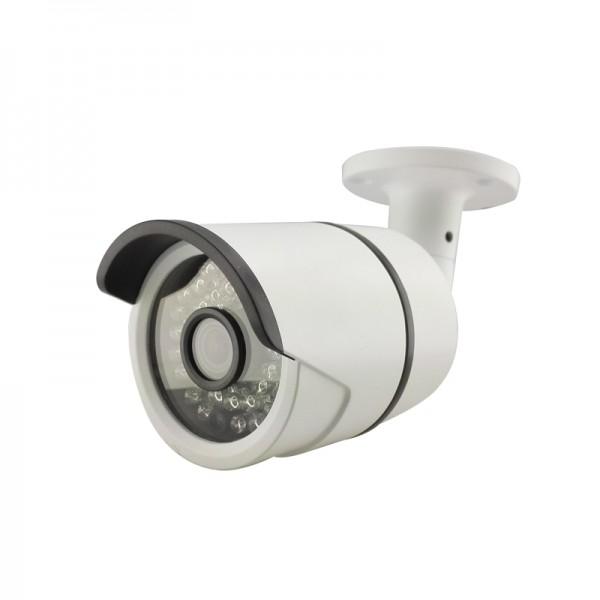 ვიდეო კამერა/CCTV CAMERA/SF-SN320G-E1